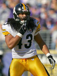 polamalu_troy